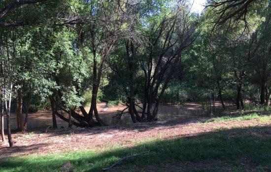 Jackpot-Ranch-About-Verde-River-Access-2